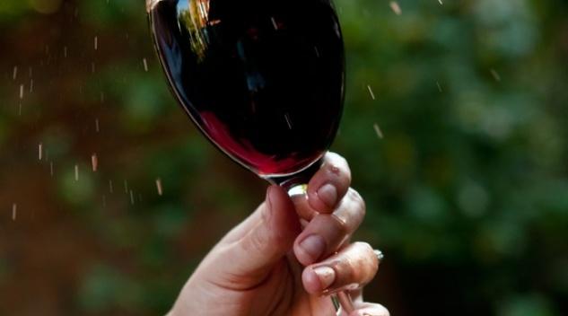 Výlety na vinobraní 2  Máme 11 skvělých tipů! 27c719393ef